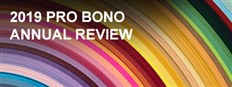 2019 Pro Bono Annual Review