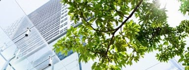 ESG - tree and office building